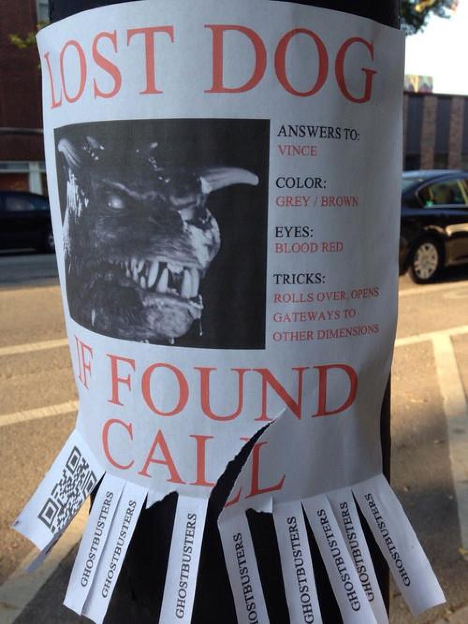best lost dog flyer ever or best lost dog flyer ever