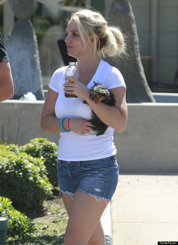 britney spears shorts
