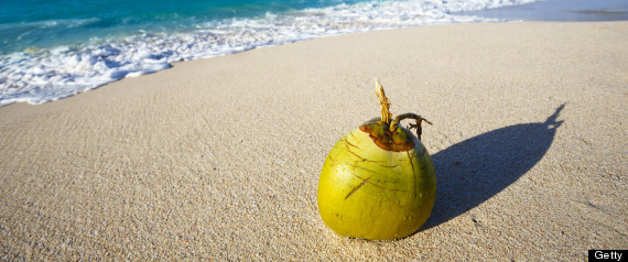 Coconut arrested in Maldives.