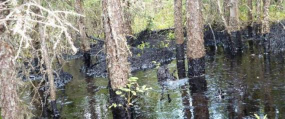 CNRL oil spill photos
