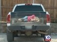 Texas Business Creates Truck Decal Of Woman Bound And Tied To Bring In New Customers