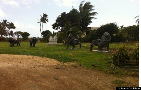 kawamoto kahala lions