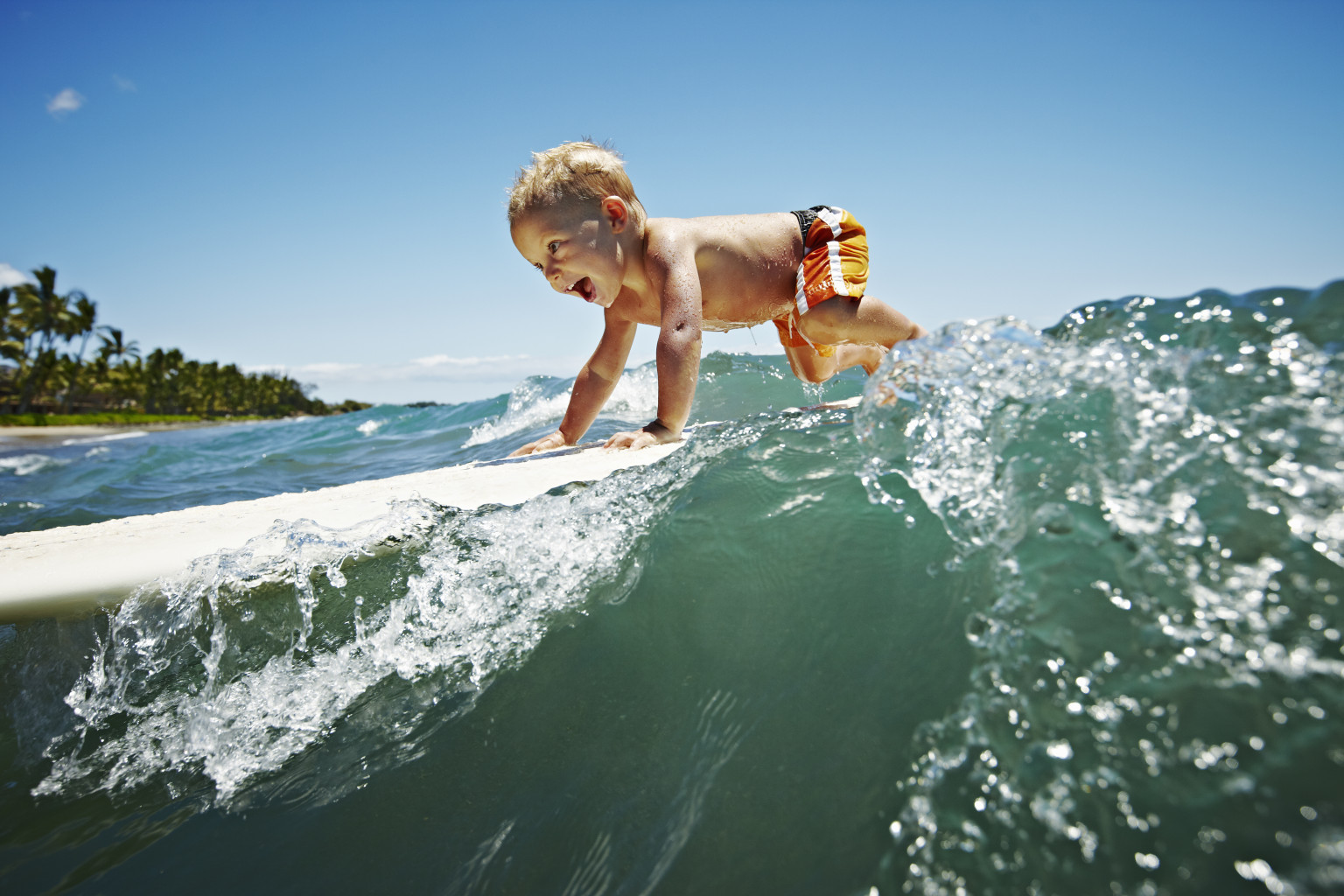 These Child Surf Prodigies Riding The Waves Are Totally ...