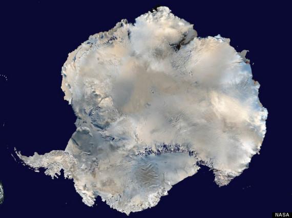 antarctic lake life