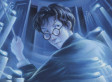These Religious Officials Don't Want You To Read Harry Potter. But We Say Ignore Them.