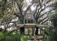 You Won't Be Able To Stop Looking At This Creepy Abandoned Treehouse Mansion (PHOTOS)
