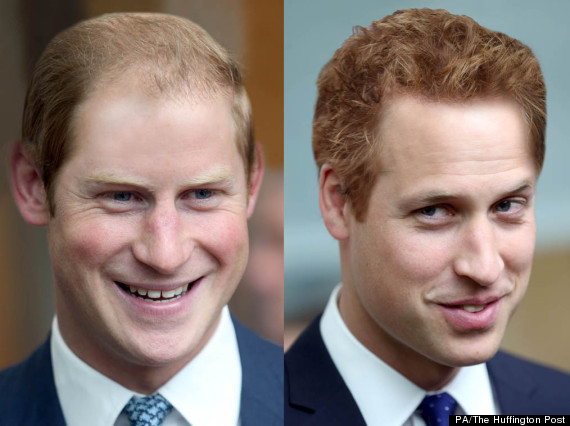 william and harry hair