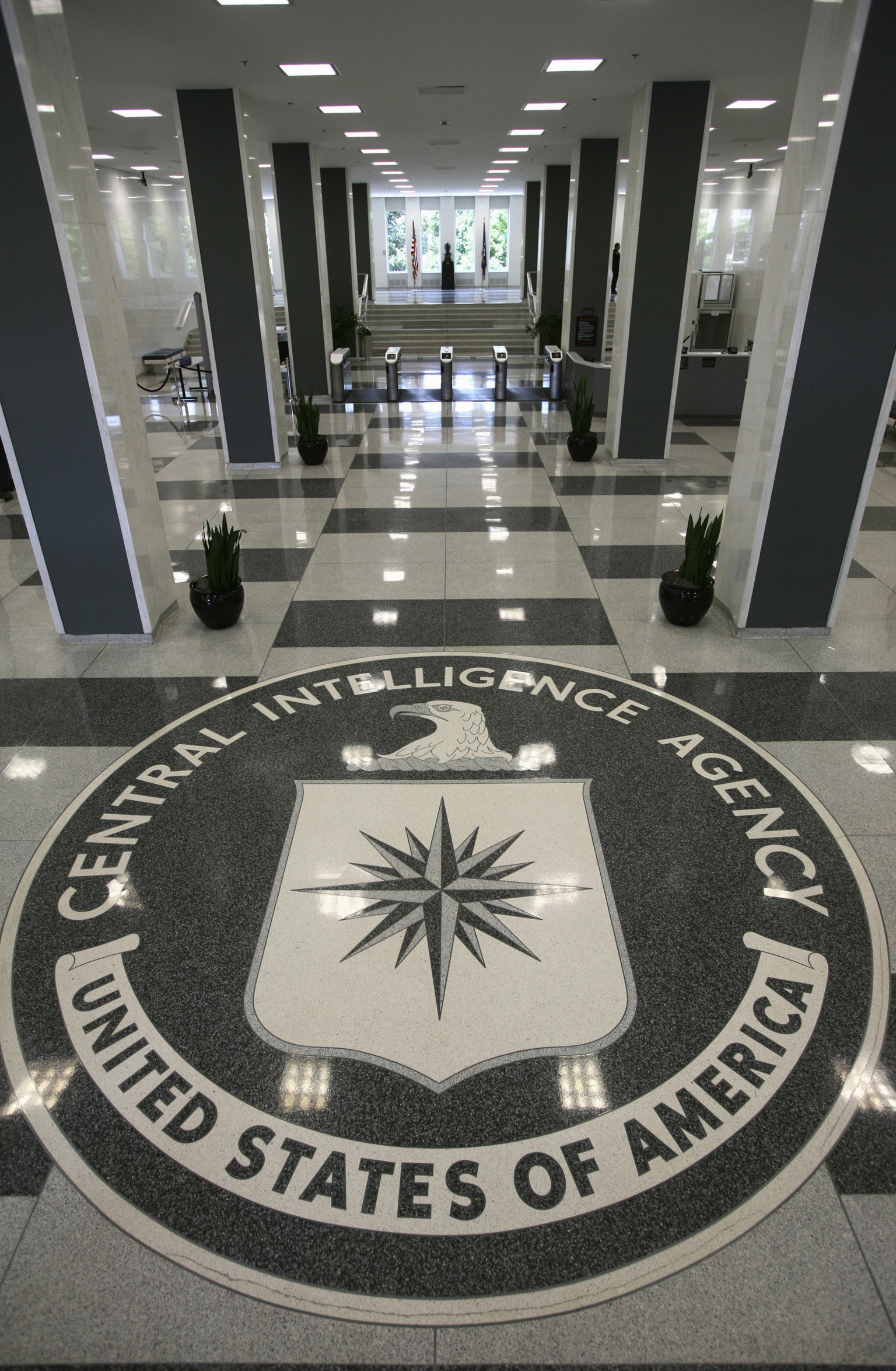 how to start your own intelligence agency