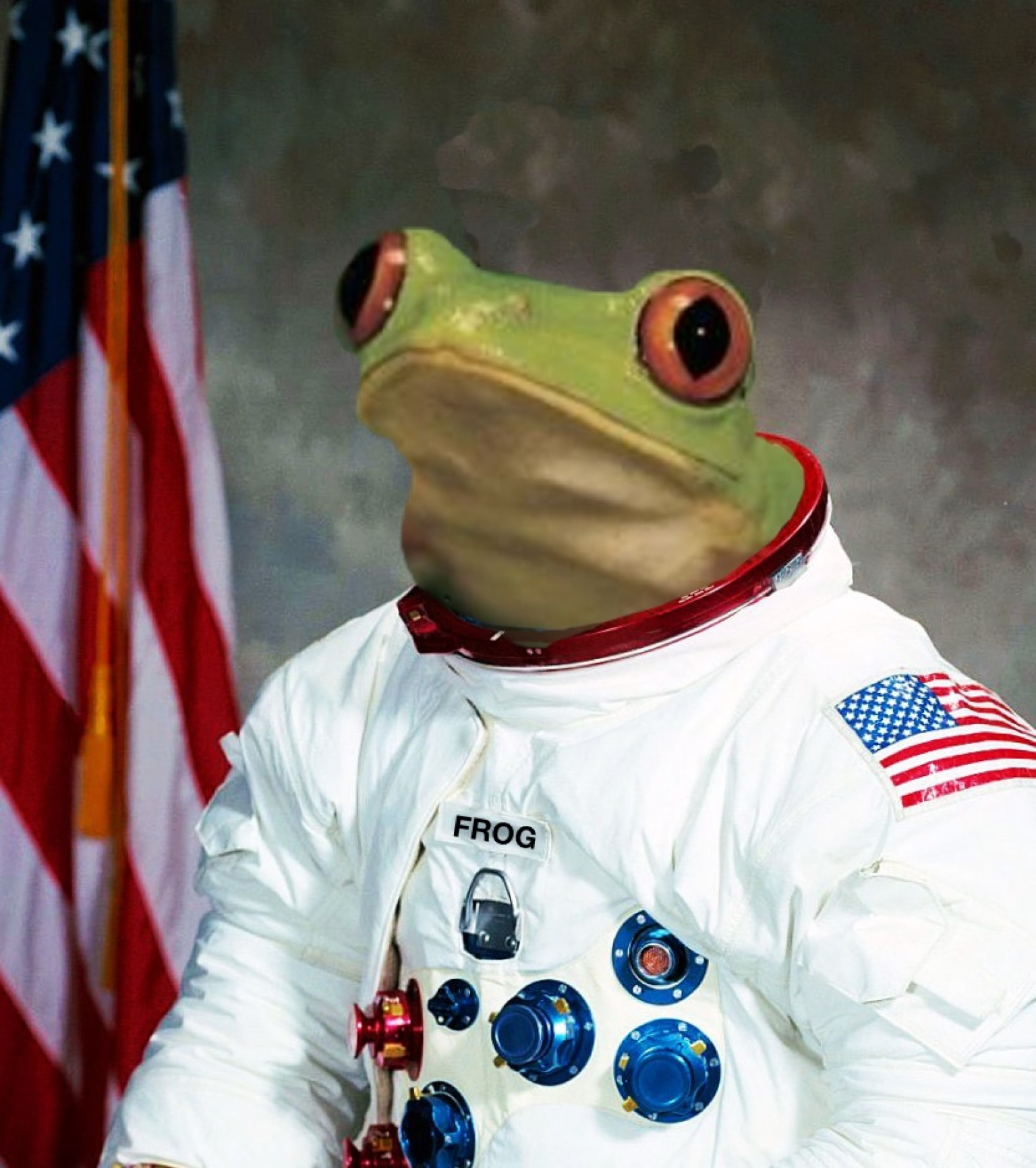 Did Frogstronaut Survive? Astronomer Ponders Nasa ...