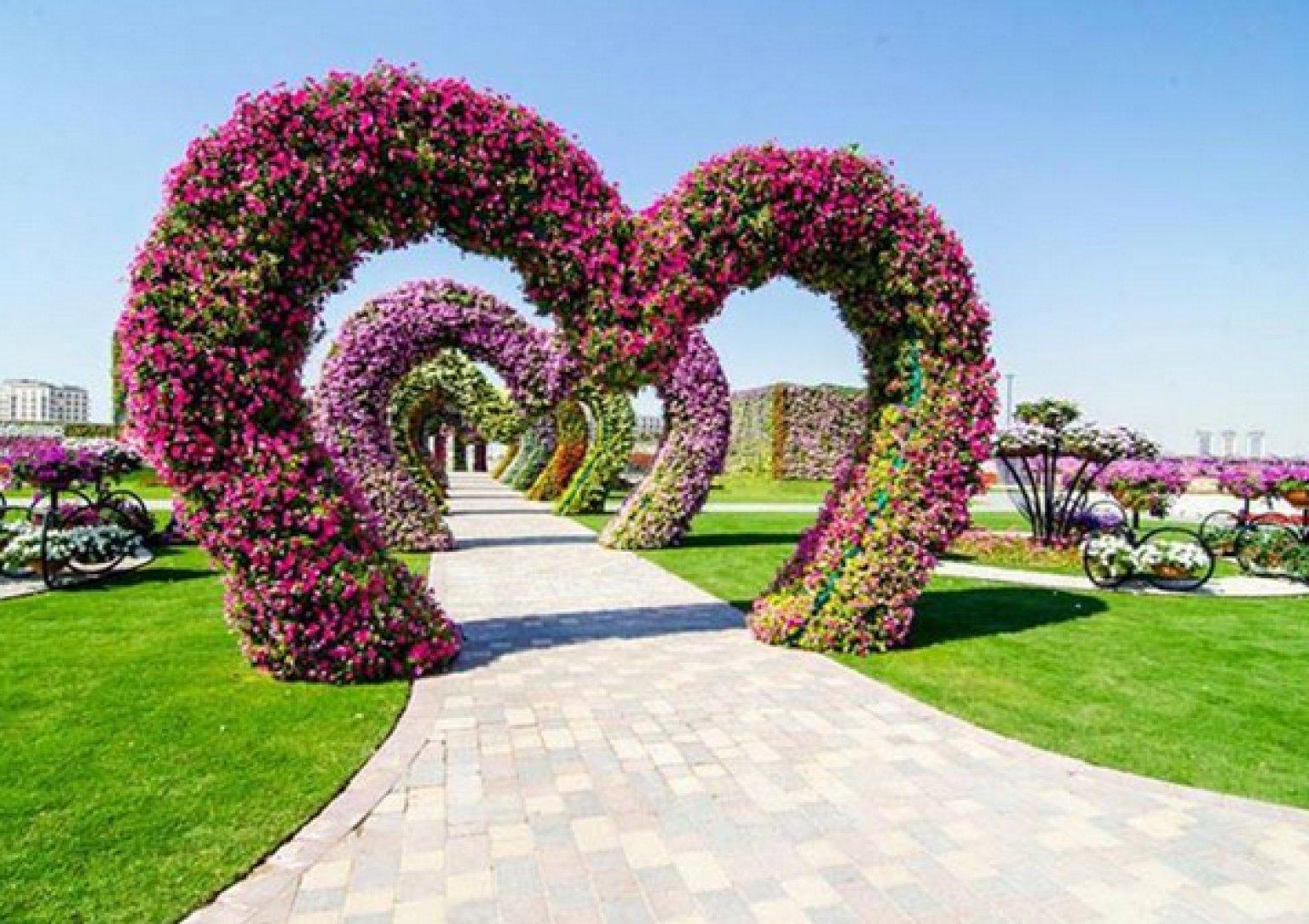 Il giardino dei miracoli di dubai 45 milioni di fiori dell 39 altro mondo foto - Il giardino di ausonia ...