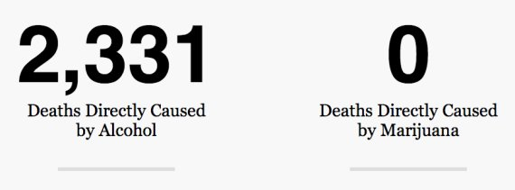 Celebrity drug alcohol related deaths per day