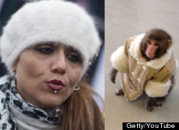 Ikea Monkey's Mom Gets HUGE Bill