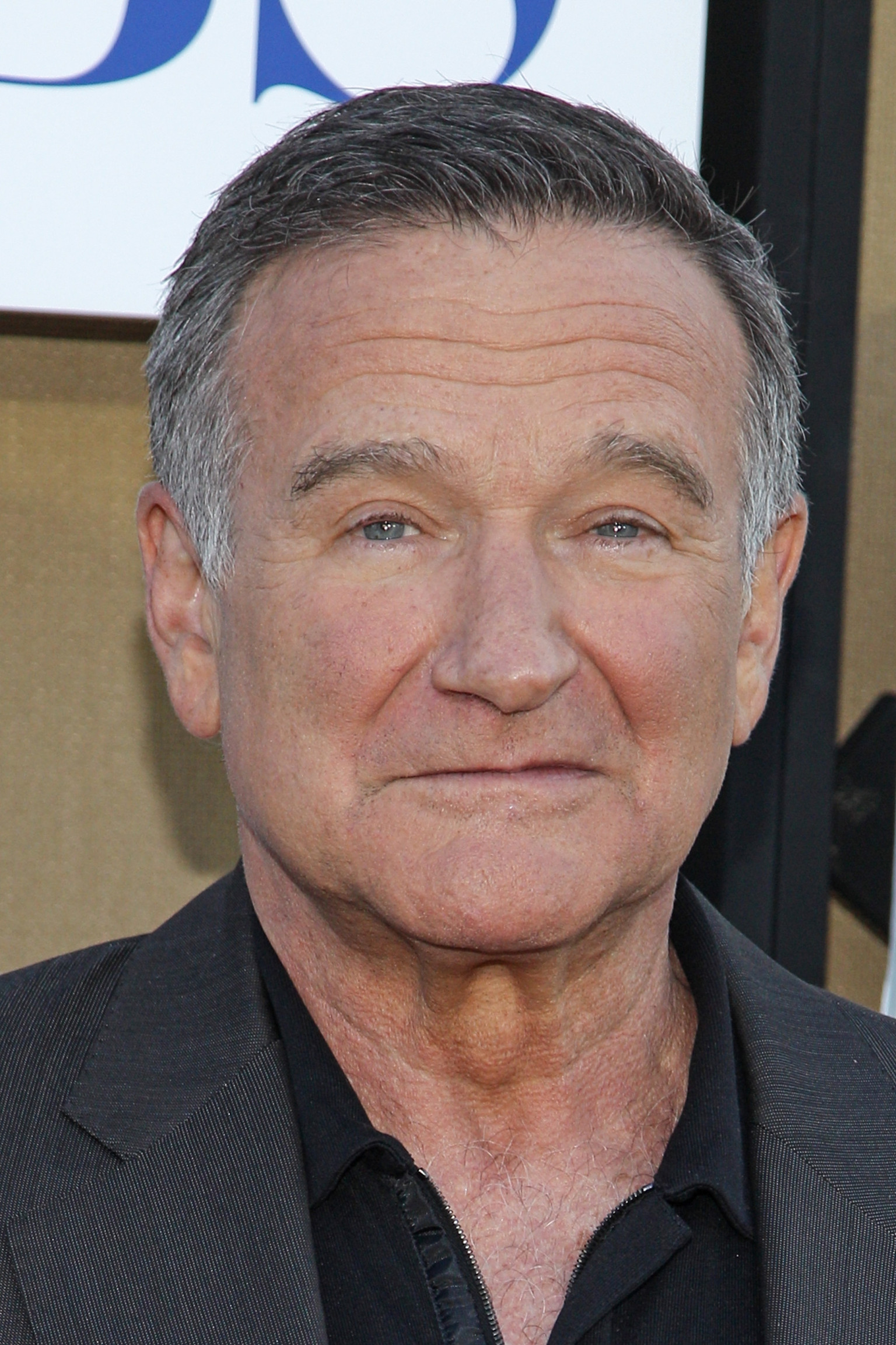 Robin Williams Talks Divorce, Alcohol Abuse And TV Show In ...