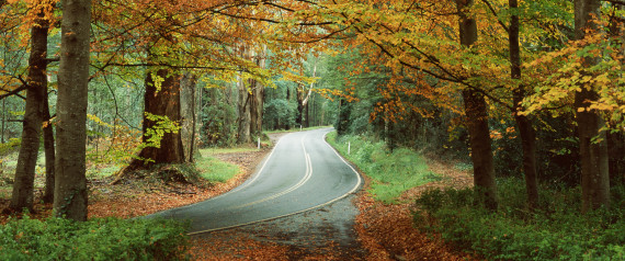 best places for autumn leaves