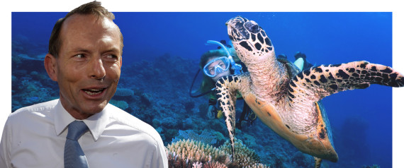 TONY ABBOTT GREAT BARRIER REEF