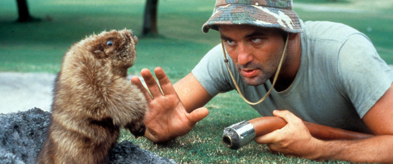 bill murray gopher caddyshack gif meme