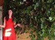 We're Not Sure Which Is More Beautiful: Model Summer Rayne Oakes Or Her Living Wall (VIDEO)