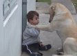 World's Gentlest Dog Befriends Little Boy With Down Syndrome, Melts Our Hearts