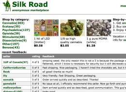silk road Ross William Ulbricht arrest