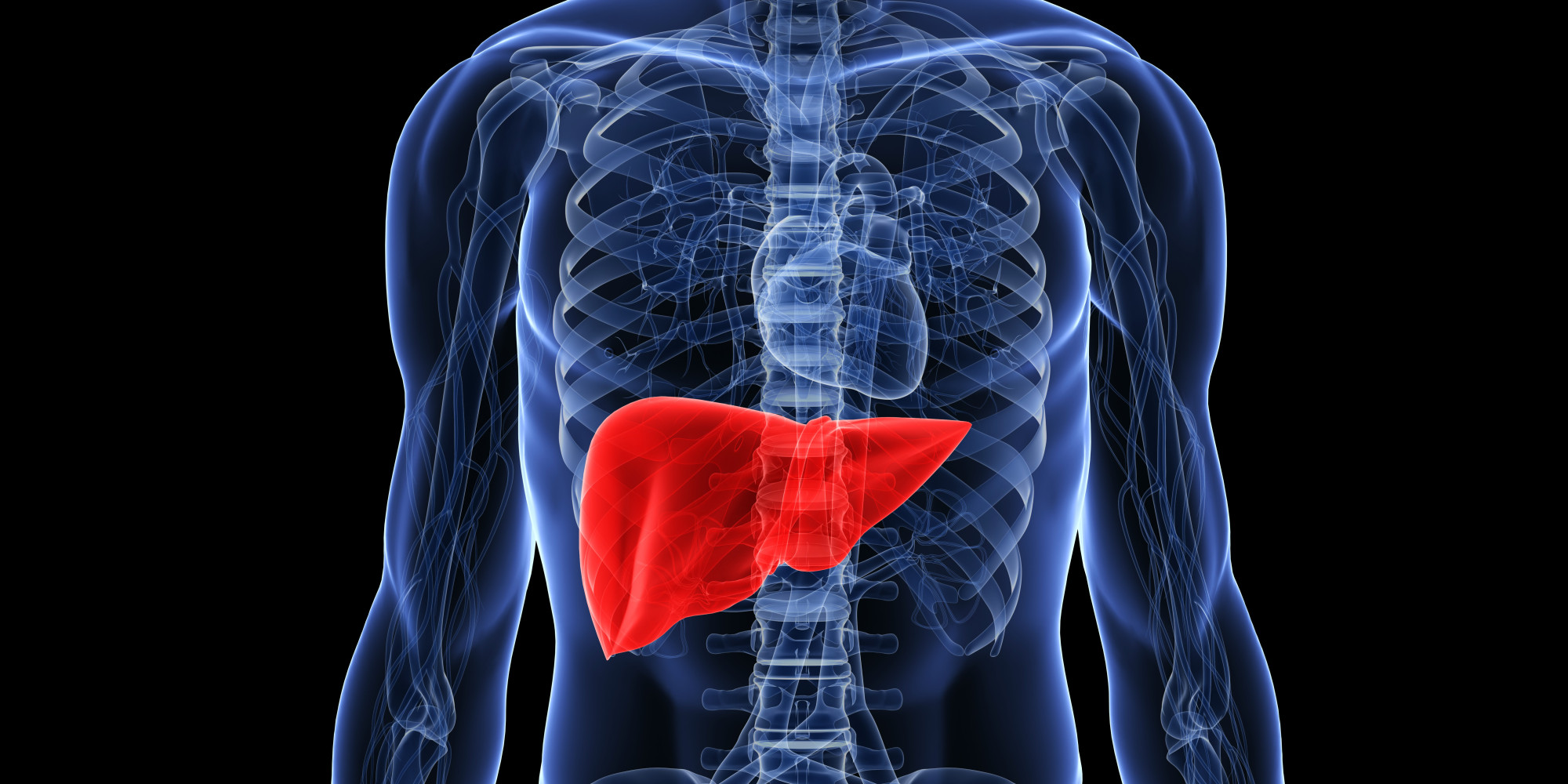liver damage quotes