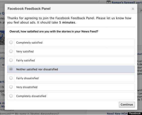 facebook feedback panel