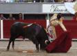 Jairo Miguel Sanchez Alonso, Teenage Spanish Matador, Kills 6 Bulls