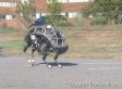 Don't Worry, That's Just A 4-Legged Robot Running At You