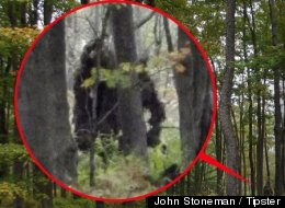 Pennsylvania Bigfoot Is A Hoax, Tipster Says