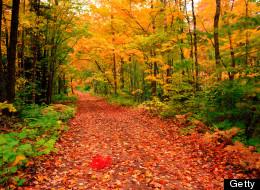 Top 10 Best Cities for Golden Autumn Travel