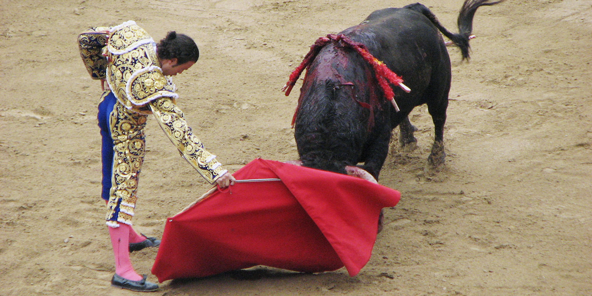 the impact of bullfighting in mexico Bullfighting involves horrendous cruelty to animals bulls are painfully tortured with lances and spiked spears before the bleeding and wounded creatures are killed with a sword into the.