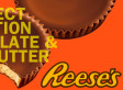 The Best Reese's Candies Of All Time, In Order (PHOTOS)