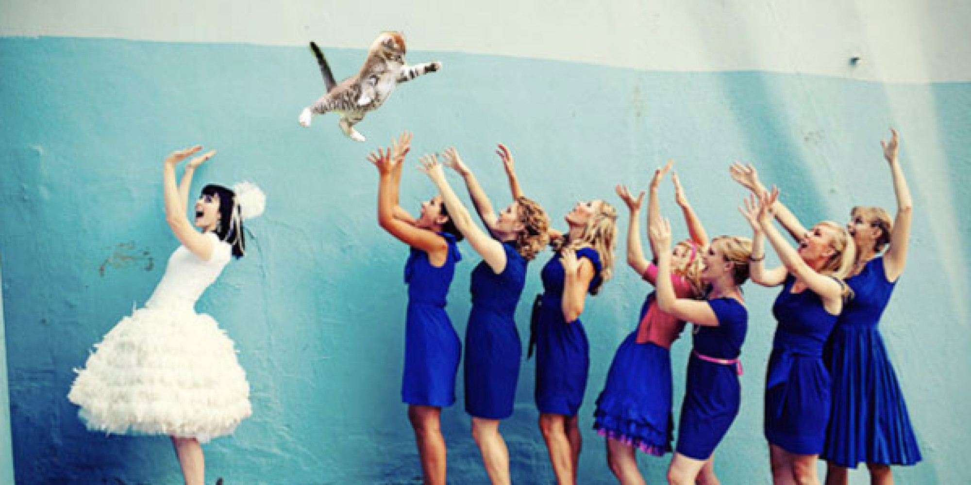 Brides Throwing Cats Will Have You Laughing From Now