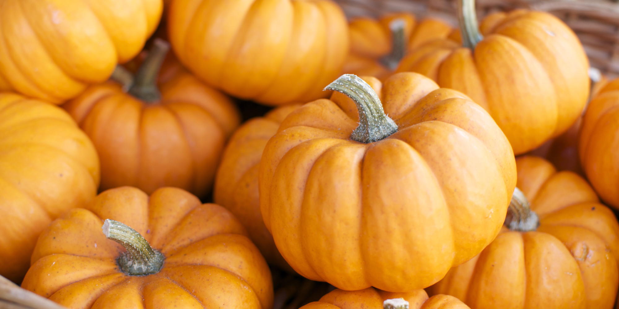 5 Surprising Uses For Pumpkin (None Of Which Are Lattes)