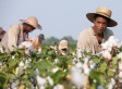 '12 Years A Slave' Film Sparks Discussion About Modern Race Relations