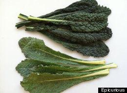 The Best Kale and Why