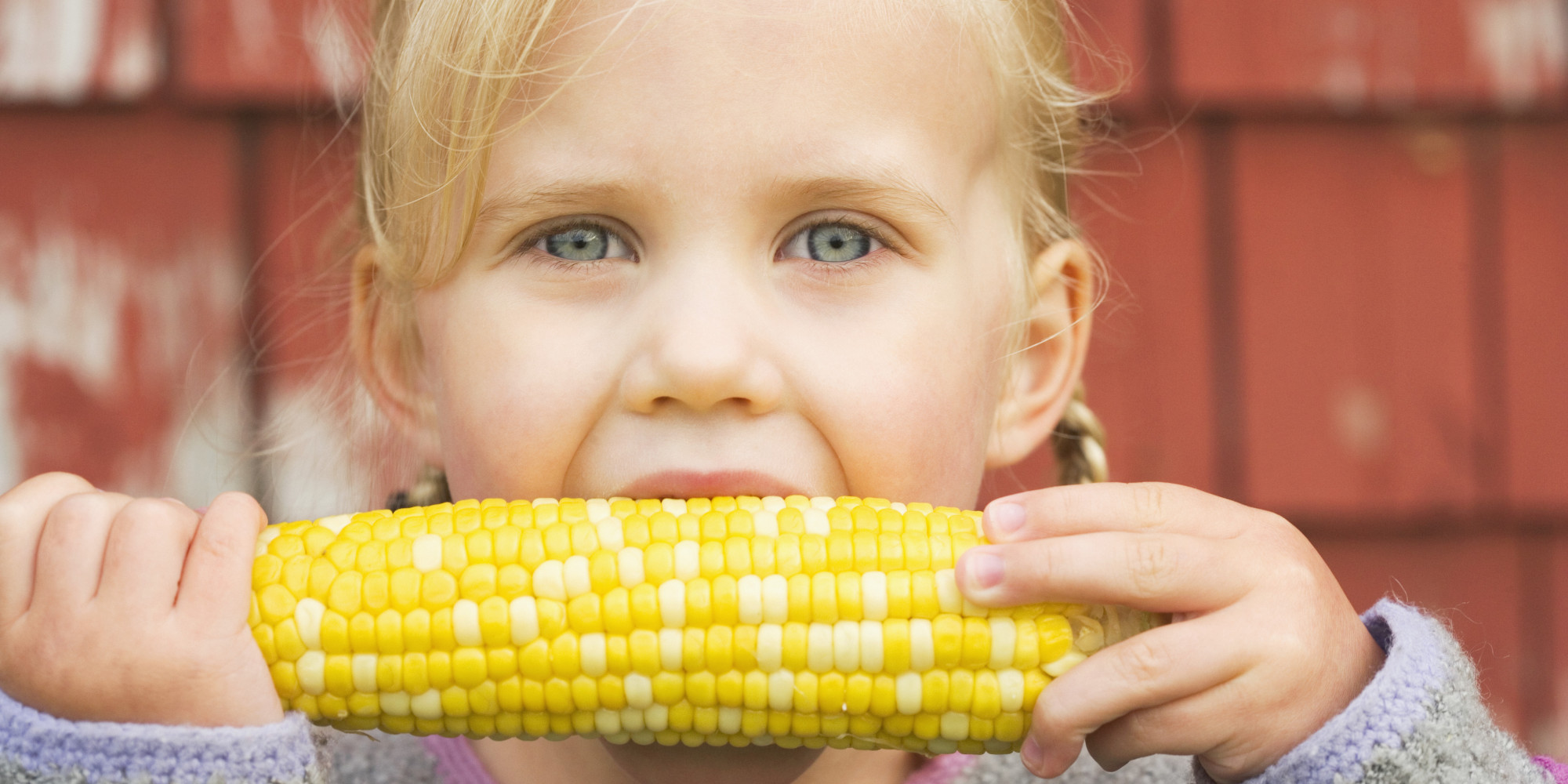 Table Talk: What Are GMOs?