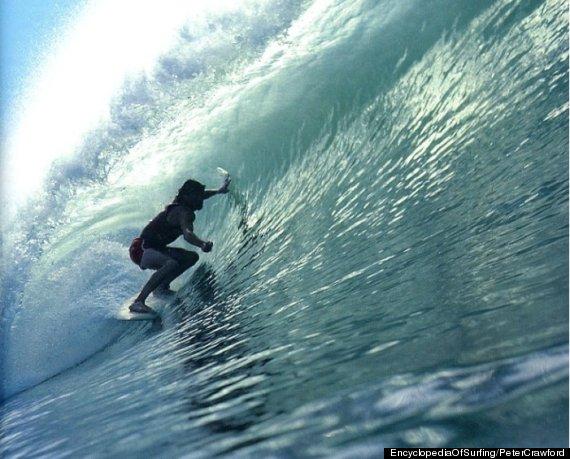 wayne lynch surfer
