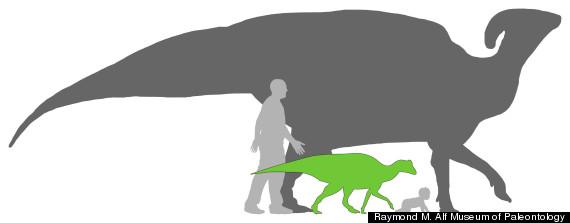dinosaur joe