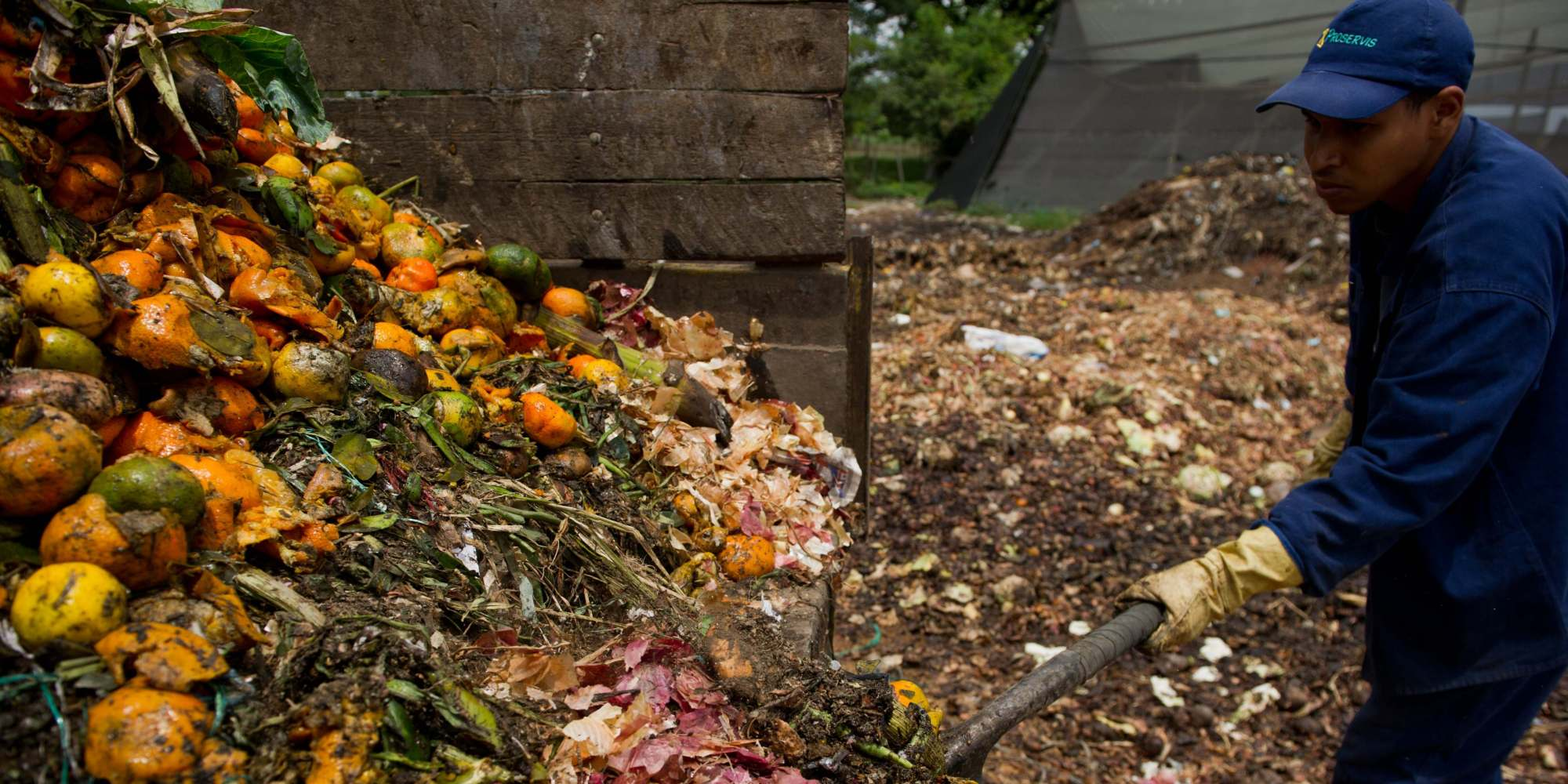 Is Food Waste An Issue For Canada