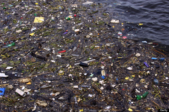 plastic pollution in the ocean essay