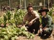 'The Walking Dead' Renewed For Season 5