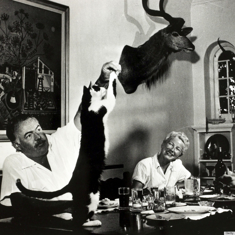 Ernest Hemingway S Cats Didn T Get In The Way Of His