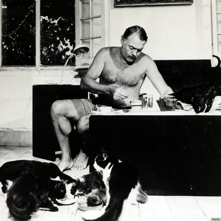 an analysis of the cat in the rain by ernest hemingway Ernest hemingway – 'cat in the rain' there were only two americans stopping at the hotel they did not know any of the people they passed on the stairs on their.