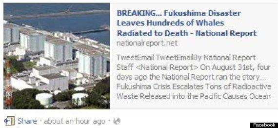 facebook fukushima whale hoax