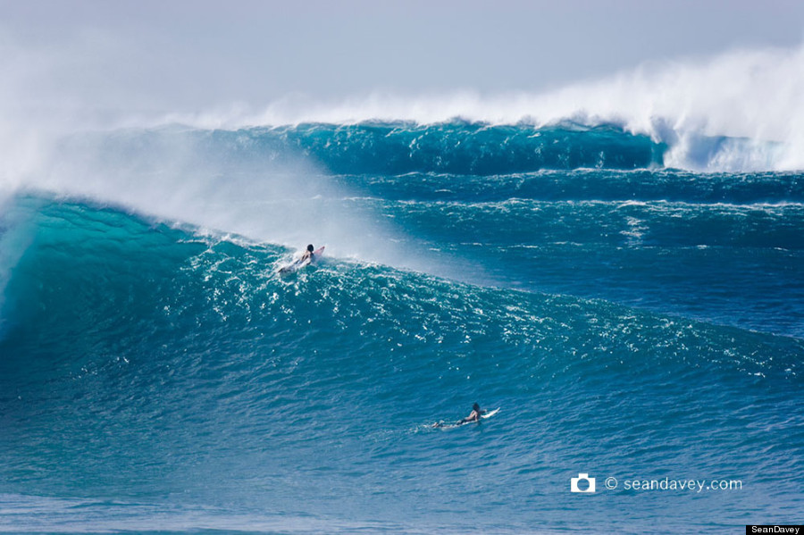 north shore surf