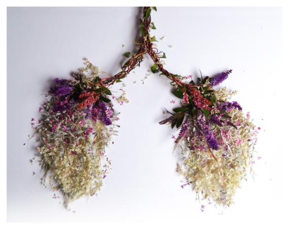 poumons végétal