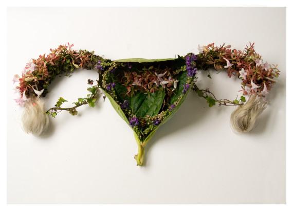 utérus végétal