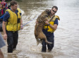 Austin Firefighters Save Dog From Floodwaters Because They 'Don't Just Rescue Two-Legged Victims'