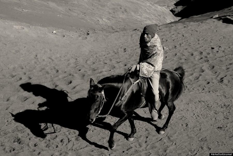 java horse