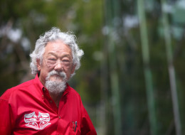 david suzuki fukushima